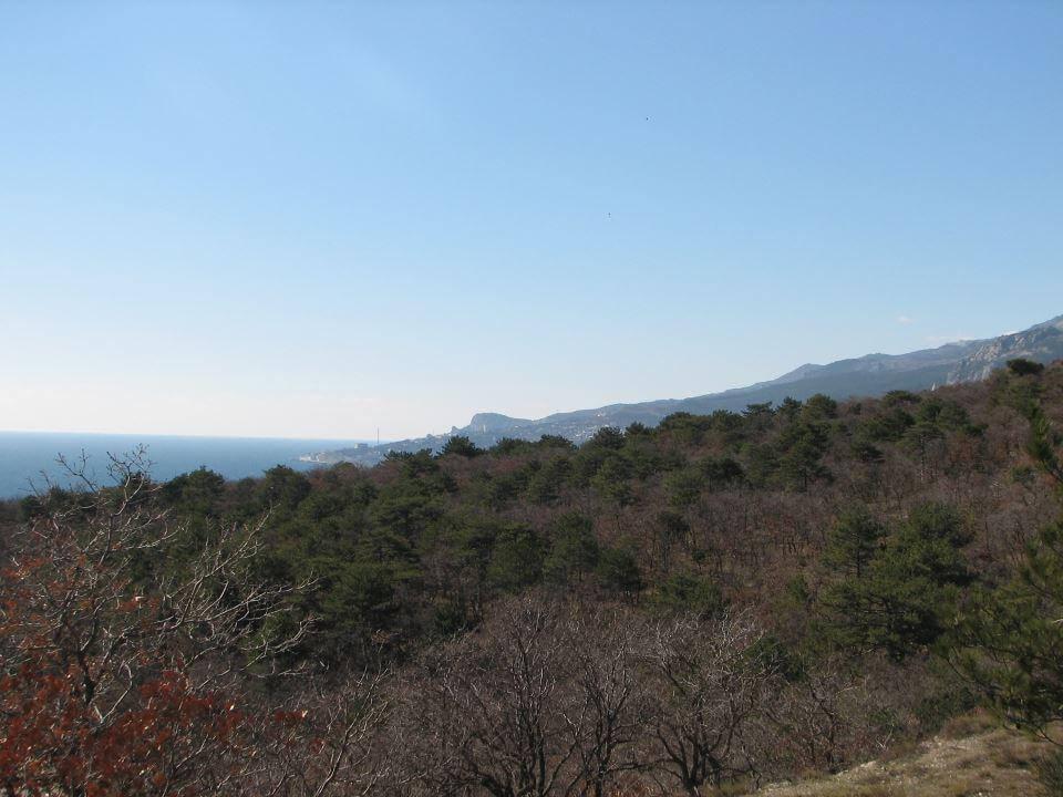 Ласточкино Вид на Юго-Запад.jpg